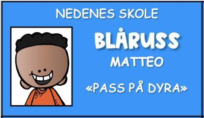 Lag ditt eget russekort! Last ned gratis redigerbare russekort til barn for barnehage og skole.