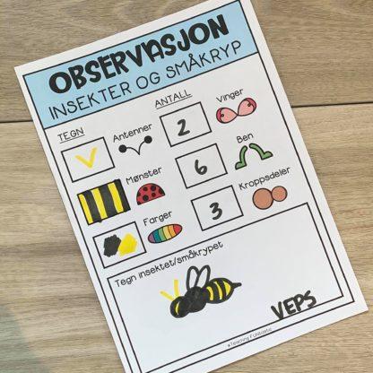 Observasjonsskjema insekter og småkryp