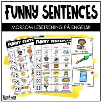 Lag og les rare setninger på engelsk