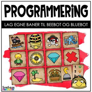 Programmering pirat