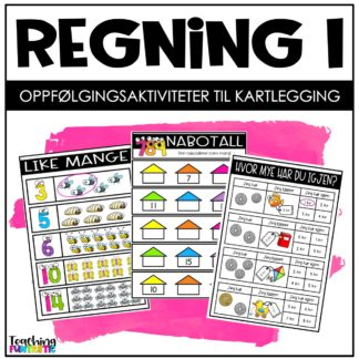 Kartlegging og oppgaver regning 1 trinn